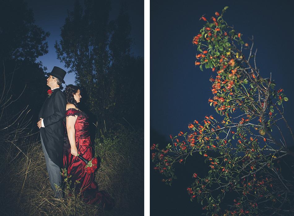fotos boda de Alicia y Antonio Madrid